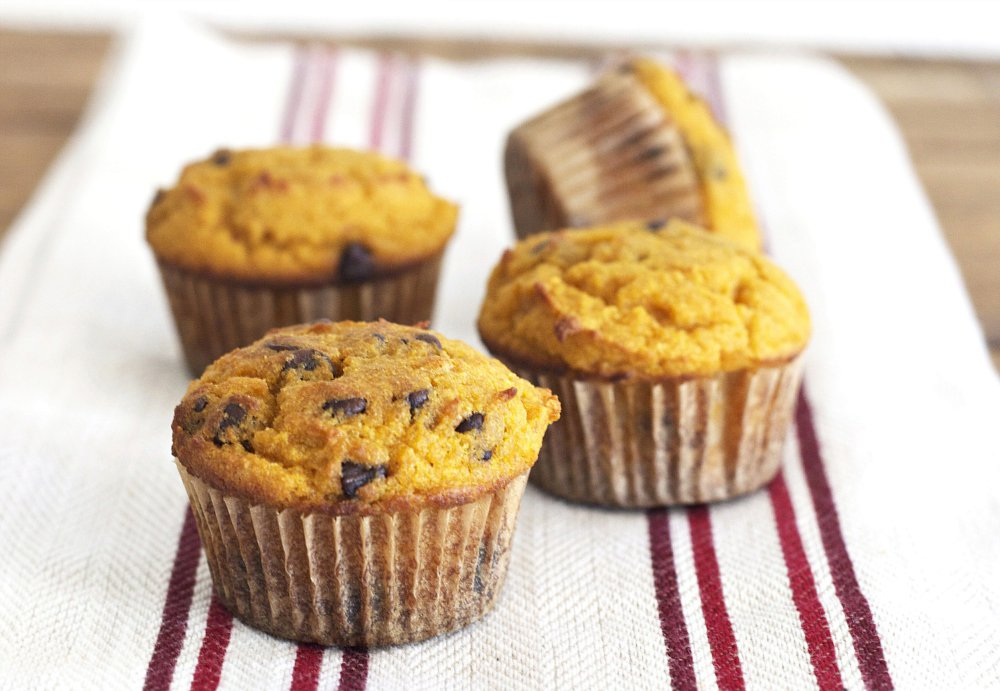 Pumpkin Muffins with Chocolate Chips (Grain Free, Paleo, Primal, Gluten Free)